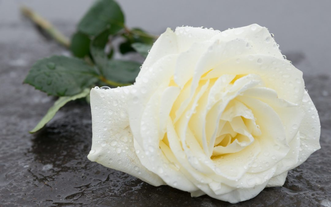 Grief and Healing After Loss